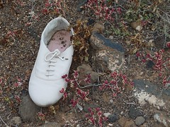 Lost sole - white shoe (Jedster67) Tags: lostsoles costateguise shoe pump sandal trainer