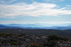 20180527-21-Layers of mountains (Roger T Wong) Tags: 2018 australia mtfield mtfieldeast np nationalpark rogertwong sel2470z sony2470 sonya7iii sonyalpha7iii sonyfe2470mmf4zaosscarlzeissvariotessart sonyilce7m3 tasmania bushwalk outdoors tramp trek walk