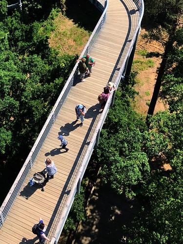 The treetop path in Beelitz
