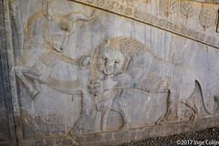 20180328-_DSC0461.jpg (drs.sarajevo) Tags: iran ruraliran farsprovince persepolis