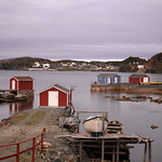 Harbour boats, Twillingate, NL thumbnail