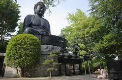 The Great Buddha of Tokyo (seiji2012) Tags: 東京 寺 浄蓮寺 板橋区 赤塚 temple itabashi tokyo prayer happyplanet asiafavorites