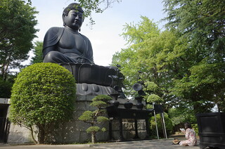 The Great Buddha of Tokyo
