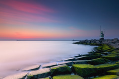 Zonsondergang in pastel (zsnajorrah) Tags: landscape seascape sea silkysmooth water rocks concreteblocks lighthouse pier aftersunset lateevening bluehour nightphotography pinksky longexposure extremeexposure neutraldensityfilter nd breakthroughphotography x4nd10 tiffen gradnd manfrotto redged canon 7dmarkii efs1018mm netherlands ijmuiden zuidpier southpier noordzee northsea twilight dusk night sky algae captureonepro explore