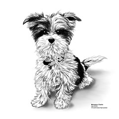Monsieur Charlo (behemothmedia) Tags: dog chien illustration drawing dessin puppy