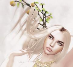 ☼NEW☼AKERUKA&GIFT☼ (l.Irina) Tags: akeruka avatar new head bento skin gift woman