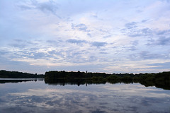 DSC_9130 (sevbette) Tags: вода утро лето