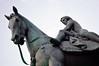Coventry (England) - Lady Godiva statue - 1 (Björn_Roose) Tags: björnroose bjornroose coventry westmidlands england statue beeldhouwwerk