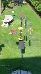 Dorothy Storry - Feeder Station with Goldfinches (2) (WBU Barrie) Tags: wbubarrie wildbirdsunlimited wildlife birds birdfeeding barrie birdfeeders birding backyardbird simcoecounty feeder