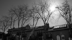 Kits Architecture - Vancouver, Canada (The Web Ninja) Tags: canon canon70d photo photography bc britishcolumbia canada canadian explore explorebc vancouver vancouverbc yvr architecture bw blackandwhite black white blackwhite home house trees sun sunny kitsilano kits kitsilanocanada day daytime