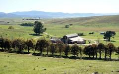 185 Bushrangers Hill Road, Adaminaby NSW