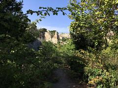 IMG_0299.jpg (Darren and Brad) Tags: sicilia italian grottadeicordari sicily italy italia syracuse parcoarcheologiconeapolis neapolisarchaeologicalpark siracusa it