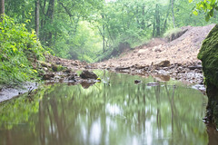 The Beach (Mulewings~) Tags: awesomecreek thecreek theproject water reflections aroundthefarm hikes rocks trees mist fog