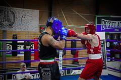 30681 - Hook (Diego Rosato) Tags: boxelatina boxe boxing pugilato ring match incontro tamron 2470mm nikon d700 rawtherapee pugno punch hook gancio