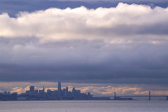 San Francisco Skyline in the Far Distance (milton sun) Tags: sanfranciscoskyline sealpoint sanmateo northerncalifornia sanfrancisco cityscape dusk seascape bay ngc bayarea wave ocean shore seaside coast california westcoast pacificocean landscape outdoor clouds sky water rock mountain rollinghills sea sand beach cliff architecture building baybridge