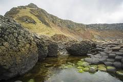 18MAR15 SLYNNLEE-7494 (Suni Lynn Lee) Tags: giantscauseway giants causeway northern ireland ni landscape scenic rocky beach volcanic
