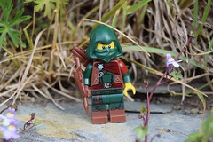 Rogue in the hideout. (Working hard for high quality.) Tags: toy lego minifigure rogue archer hood play grass stone pebble plant flower