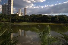 DSC_0661 (Proflázaro) Tags: goiás cidade goiânia parquevacabrava lago água bosque cerrado céu nuvem grama gramado jardim edifício arquitetura engenharia paisagem paisagemurbana natureza palmeira nikond3100 viagem brasil ecologia canteiro
