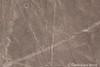 Nazca and Palpa lines - the dog (10b travelling / Carsten ten Brink) Tags: 10btravelling 2017 america americas andes carstentenbrink clickheretoaddkeywords humanidad iptcbasic latin latinamerica life nazca nazcalines palpa patrimonio perou peru peruano perú southamerica sudamerica sudamérica suedamerika suramérica unesco unescoworldheritagesite worldheritagesite aerialview archaeology dog flight geoglifos geoglyph geoglyphs lines líneas mammal mystery overflight perro ph700 tenbrink