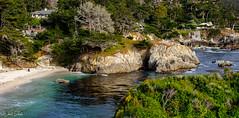 Point Lobos Natural Preserve Carmel CA (jw7113) Tags: pentaxk3 pentaxda35mmf24 carmel point lobos monterey county
