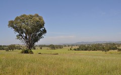 199 Black Lead Lane, Gulgong NSW