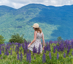 One With The Lupines (K2parn Photography) Tags: sugarhill newhampshire unitedstates us