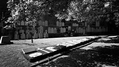 Cimetière des fusillés (BrigitteChanson) Tags: cimetière tamines sambreville fusillés noiretblanc