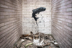 Jump (LaR0b) Tags: ue urban urbex exploration exploring decay abandoned lar0b lost hdr highdynamicrange roa factory graffiti art fish toilet wc