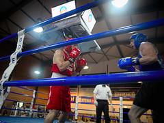 31113 - Face Off (Diego Rosato) Tags: boxe boxing pugilato boxelatina ring match incontro nikon d700 2470mm tamron rawtherapee face off