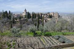Alhambra - Granada (AleMex66) Tags: granada alhambra spagna andalusia d7000 nikonclub nikon travel travelblogger touring tourism viajes viaggi generalife nazaries isabella alcazaba landscape