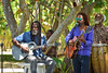 DSC_4474 (Heidi Zech Photography) Tags: jamaica reggae music goldeneye liveband livemusicphotography rasta dreadlocks