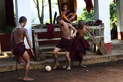 LET THE WORLD CUP BEGIN (BoazImages) Tags: myanmar buddhist monks soccer worldcup football documentary southeastasia burmese boazimages