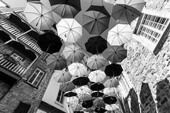 Vieux-Québec 2018-08a (Agirard) Tags: umbrella parapluie street rue batis18 batis sony a7ii zeiss quebec canada ville insolite original art artist bw nb blackandwhite noiretblanc monochrome contrast