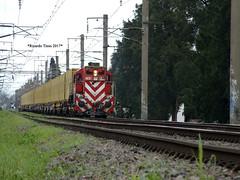 6631-Luis Guillón_1 (Ricardo_Tieso) Tags: tren ferrocarril ferroexpreso pampeano luis guillon general motors gr12 6631