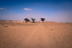 1804231807_Maroc_355 (Nuthead Dispatches) Tags: trip journey bike bicycle maroc atlas bikepacking africa desert marocco adventure