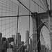 Brooklyn Bridge Web (NYC USA)