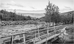 Upper Teesdale . (wayman2011) Tags: lightroomfujifilmxpro1 wayman2011 bwlandscapes mono rural footbridges rivertees rivers bridges pennines dales teesdale countydurham uk