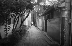 img154 (seobo-phil) Tags: film photo camera filmphoto filmcamera korea seoul 서울 필름 필름사진 필름카메라 흑백사진 snap 스냅 스냅사진