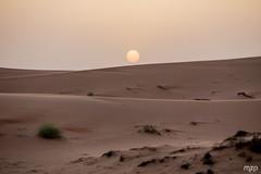 Sunset on Wahiba Sands (mzagerp) Tags: eau aue emirats arabes unis united arab emirates oman mascat mascate abu dhabi dubai bani awf wadi khalid shab mosquee mosque muslim louvre muscat masqat
