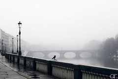 Lonely Days (A.Reef (mostly off)) Tags: monochrome melancholic misty pensive cold moody loneliness aoi elitegalleryaoi bestcapturesaoi