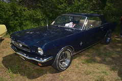 Ford Mustang (jfhweb) Tags: jeffweb voitureamericaine voitureus americancar sportcar voituredesport voituredecollection musclecar oldschoolday oldschoolday9 chateauneuflerouge ford mustang