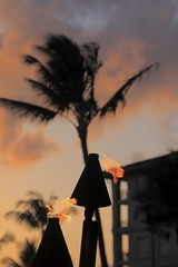 Tiki Time (stephencharlesjames) Tags: hawaii maui sunset tiki lamps flame palm tree sky