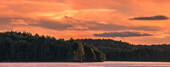 Sunset on Burnt Island Lake. (PebblePicJay) Tags: algonquinpark landscape nature sunset red water green forest lake ontario canon canon6d