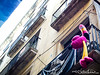 barcelona18016 (by claudine) Tags: light16 light l16 barcelona spain architecture flamingo unexpected pink looking up bird balcony hanging around chillin street streetphotography capturedbylight capturebylight16 lightcamera