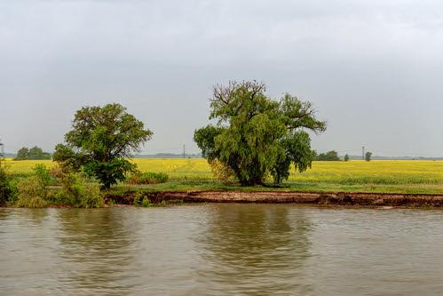 Don River 9 ©  Alexxx Malev