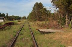 Springbrook Station Platform (bkays1381) Tags: wisconsin railroad springbrook wgn wisconsingreatnorthern