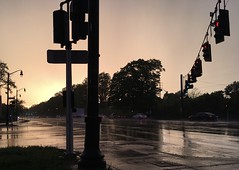 Sunset and rain reflection on the street (SplashH2O) Tags: light reflection street rain rainy wet sunset sunlight evening traffic trafficlight trafficlights cars brakelights red pole intersection trees streetlights streetlamps lamppost