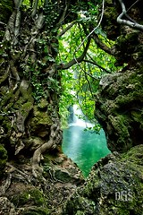 Discovering the waterfall (AS MYSELF) Tags: hueznar rio sannicolasdelpuerto sevilla sevillában seville sevilha siviglia sierranorte andalucia andalusia andalousie naturaleza nature waterfall rocks rocas hdr diegogutiérrez canoneos70d green verde