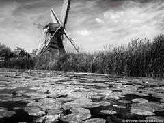 Noordermolen (iPhone Fotograaf) Tags: landscape blackandwhite sun water groningen iphone8plus dutch sky windmill