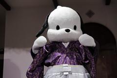 53AL5269 (OHTAKE Tomohiro) Tags: sanriopuroland tama tokyo japan jpn